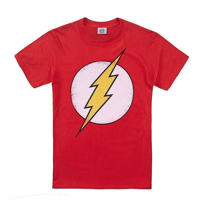 48619db59c7 DC Comics Distressed Flash Logo Camisa Manga Larga para Niños: Amazon.es:  Ropa y accesorios