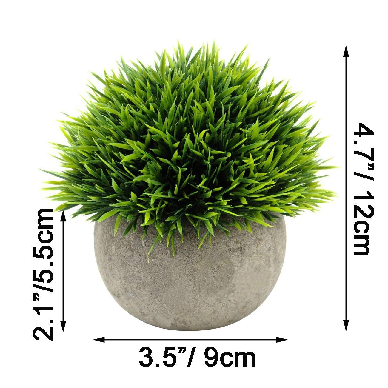 3 Pack Fresh Green SuperMoss 7 59834 25541 3 Moss Balls 4