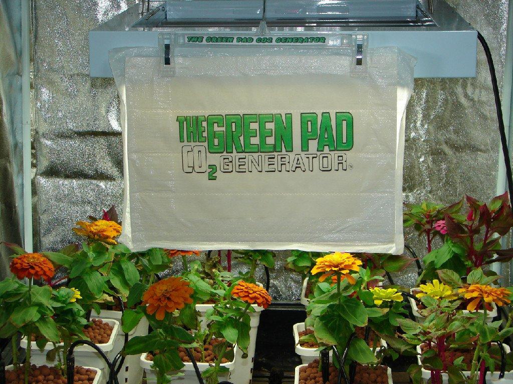 Amazon.com  The Green Pad Co2 Generator 5 Pack  Portable Power Generators  Garden u0026 Outdoor & Amazon.com : The Green Pad Co2 Generator 5 Pack : Portable Power ...