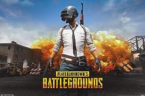 """Trends International PLAYERUNKNOWN's Battlegrounds (PUBG) - Landscape Wall Poster, 22.375"""" x 34"""", Unframed Version"""