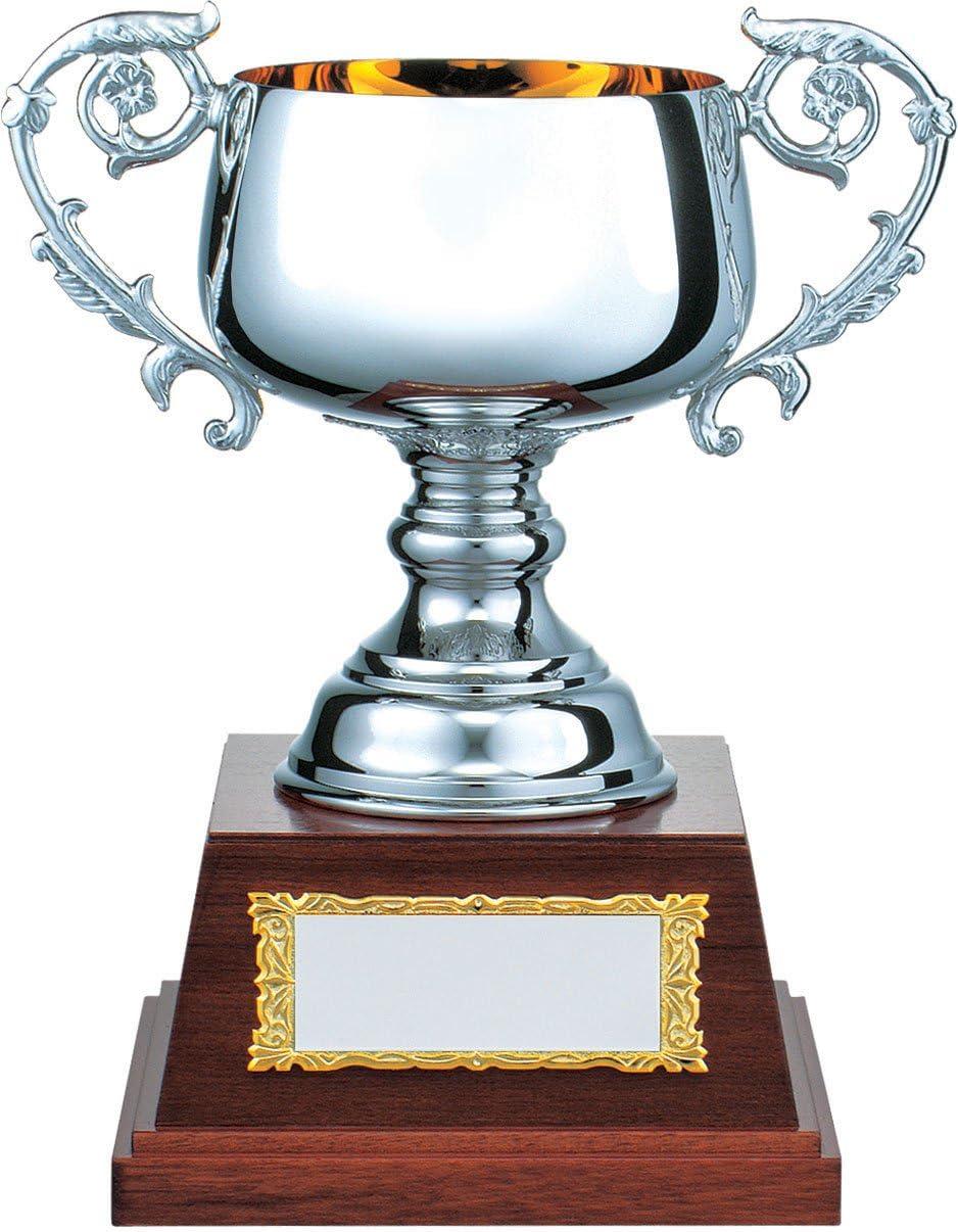 V-SHIKA パインシルバーカップ PS.1105