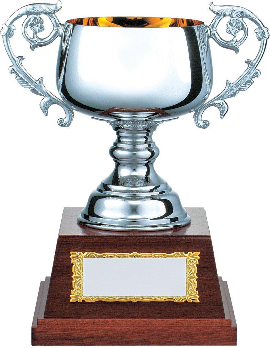 V-SHIKA パインシルバーカップ PS.1105 B07BQTCXG3  Aサイズ