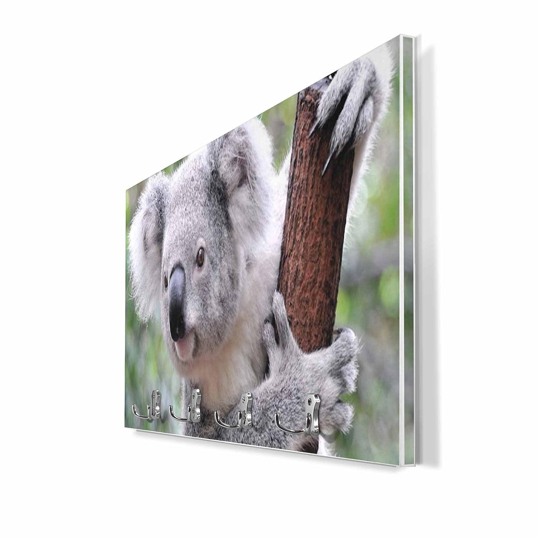 Perchero de pared blanco con 4 dobles y diseño: Koala ...