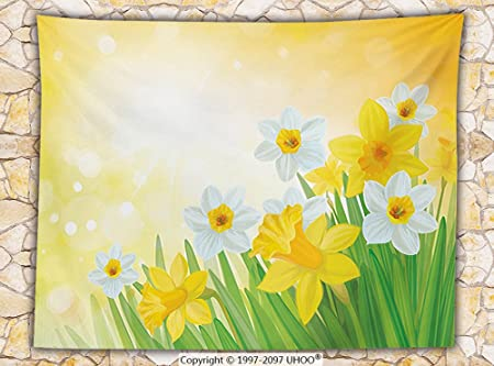 7b274b50b Daffodil Decor Fleece Throw Blanket Daffodils in Garden Narcissus Rebirth  and New Beginnings Celebration Graphic Throw: Amazon.co.uk: Kitchen & Home