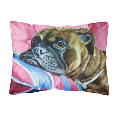 Caroline's Treasures 7347PW1216 Fawn Boxer Fabric Decorative Pillow, 12H x16W, Multicolor : Garden & Outdoor