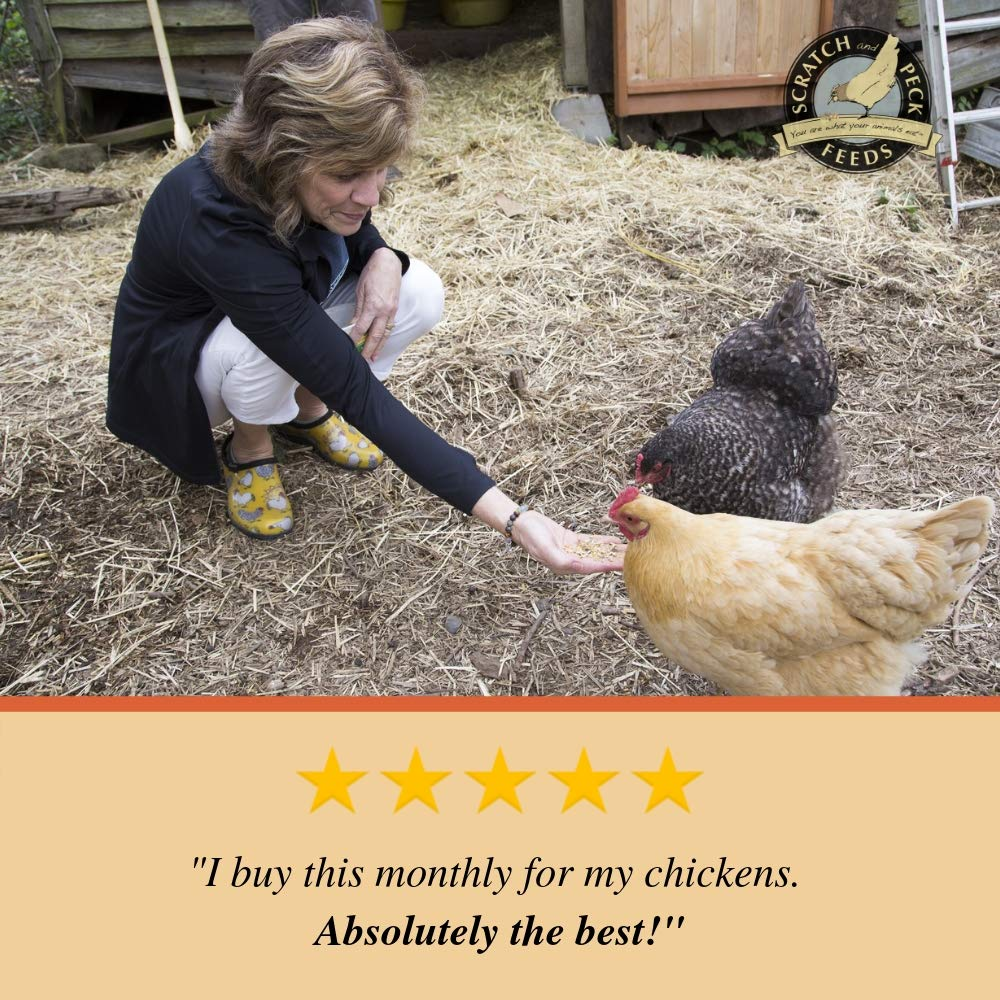 Naturally Free Organic Layer Feed for Chickens and Ducks - Non-GMO Project  Verified, Soy Free and Corn Free - Scratch and Peck Feeds