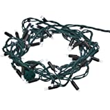 Amazon Basics 50 LED Commercial Grade Outdoor Christmas String Lights - Green Rope, Bright White LED, 16-Foot