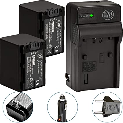 Includes Qty 2 NP-FV70 Batteries NPFV70 Battery /& Charger Kit for Sony DCR-SX63 DCR-SX65 DCR-SX83 DCR-SX85 Handycam Camcorder AC//DC Battery Charger