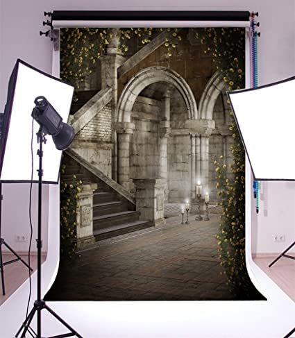 5X7FT Laeacco Vinyl Gothic Architecture Background Photography Backdrop Gloomy Interior Castle Arched Flowers Vinve Photos