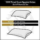 Superior 1000 Thread Count 100% Egyptian