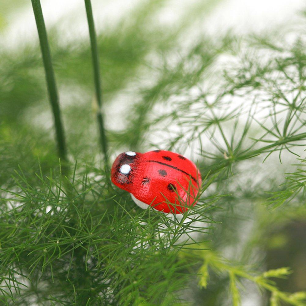 Amazon.com : Danmu Self-Adhesive Ladybugs Miniature Plant Pots ...
