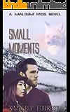 Small Moments: A Malsum Pass Novel