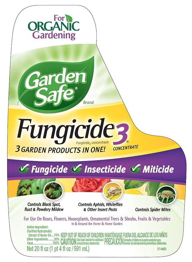 Amazon Garden Safe 10411x Fungicide3 Concentrate Hg 10411x