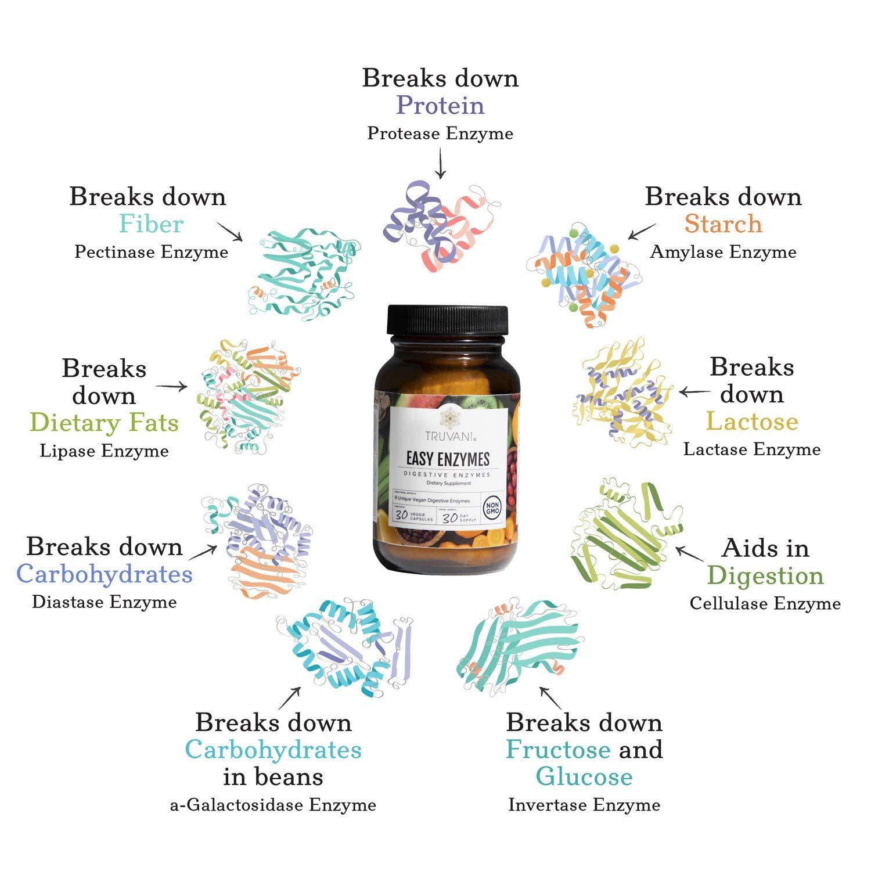 Amazon.com: Truvani - Enzimas digestivas - Mezcla de 9 ...