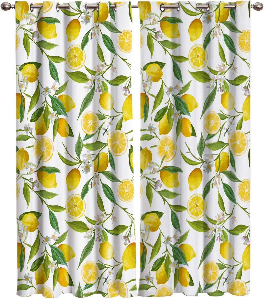 """Printed House Home Decor Window Curtains, Summer Garden Fruit Lemon Slice and Leaves - 2 Panel Window Treatment Set with Grommet Window Drapes Covering for Kitchen Cafe Living Room 80"""" W x 63"""" L"""