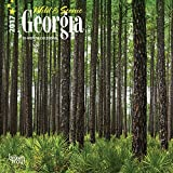 Georgia - Wild & Scenic Nature - 2017 Mini 7inch x 7inch 12inch x 12inch Hanging Square Wall Photographic Planner US State Calendar