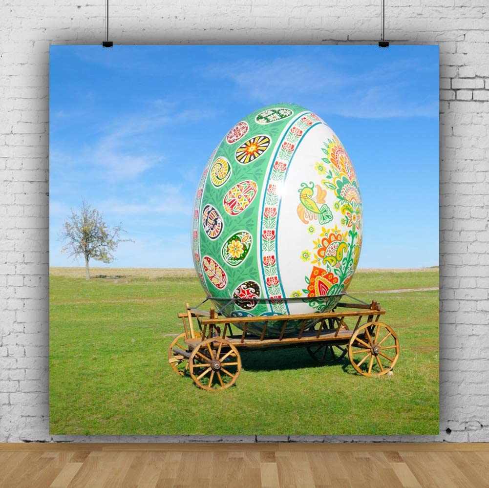 Baocicco 10x10ft Happy Easter Theme Backdrop Huge Easter Egg Photo Background Wagon Photography Backdrop Spring Grassland Field Blue Sky Backdrop Photo Studio Video Props Photo Booth