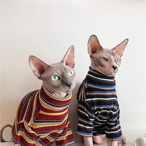 HCYD Ropa de esfinge, Ropa de Gato sin Pelo, artículos para Mascotas, Gatitos, Azul, L: Amazon.es: Productos para mascotas