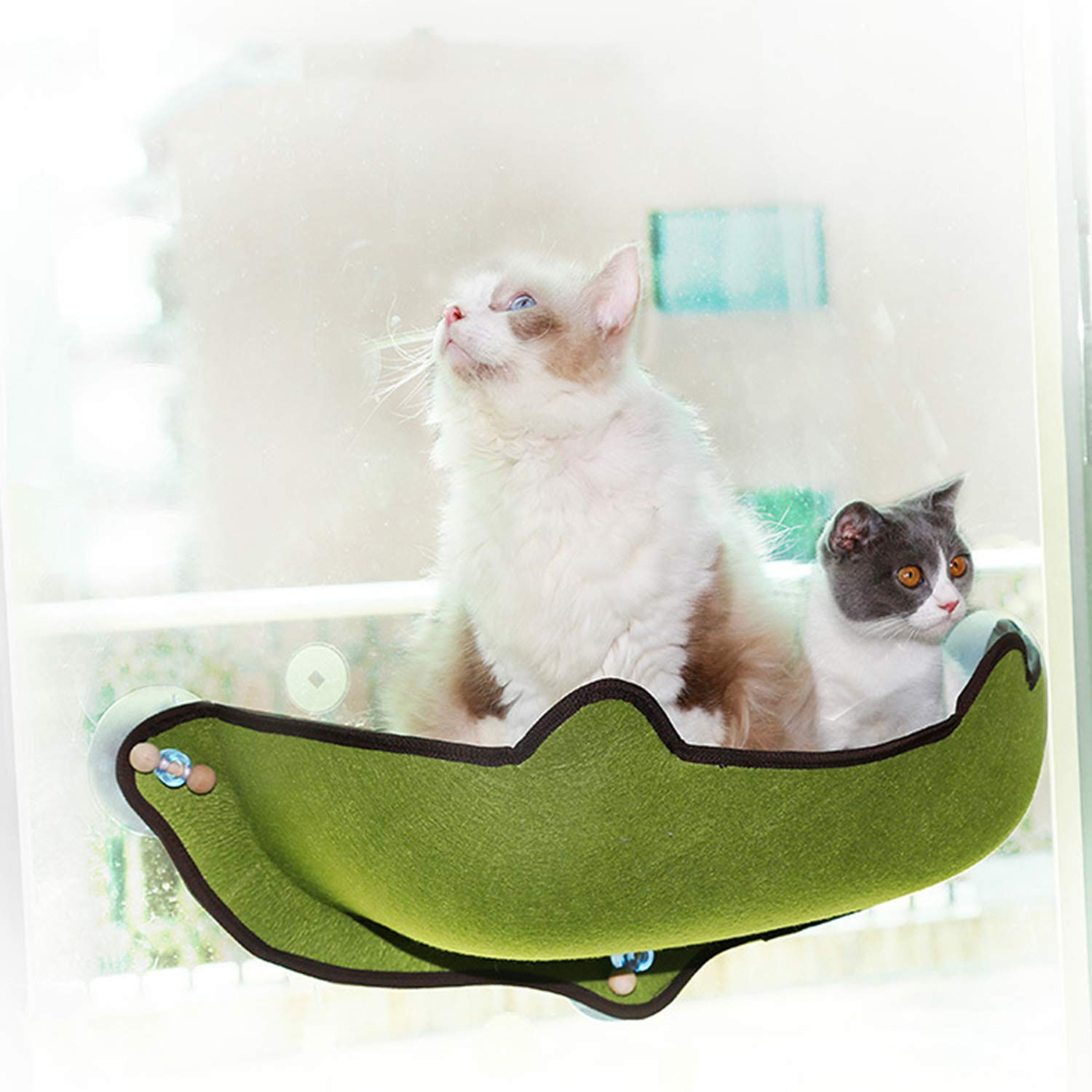 Green Glass Window Sill Hanging Bed Cat Nest Cat Pad Cat Hammock Cat Super Powerful Suction Cup Sun Wall Bed