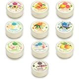 Pet House Mini Candle Sampler - 10 Pack Spring to Summer - Odor Neutralizing - 100% Natural SOY WAX - - 10-12 Hour Burn Time - Made in the USA - Amazing animal lover gift