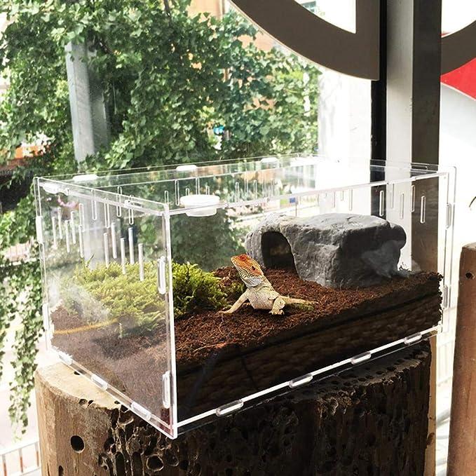 HoneybeeLY - Terrario de acrílico Transparente para Reptiles ...