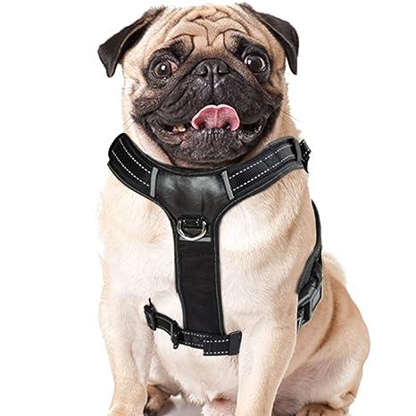 BELISY Arnés acolchado reflectante para perro I nylon e imitación ...