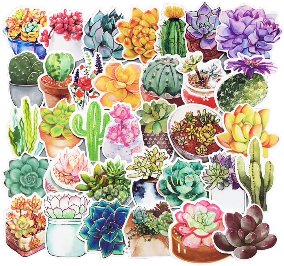 Honch Succulent Stickers Pack 70 Pcs Suitcase Stickers Vinyl Decals for Laptop Bumper Helmet Ipad Car Luggage Water Bottle
