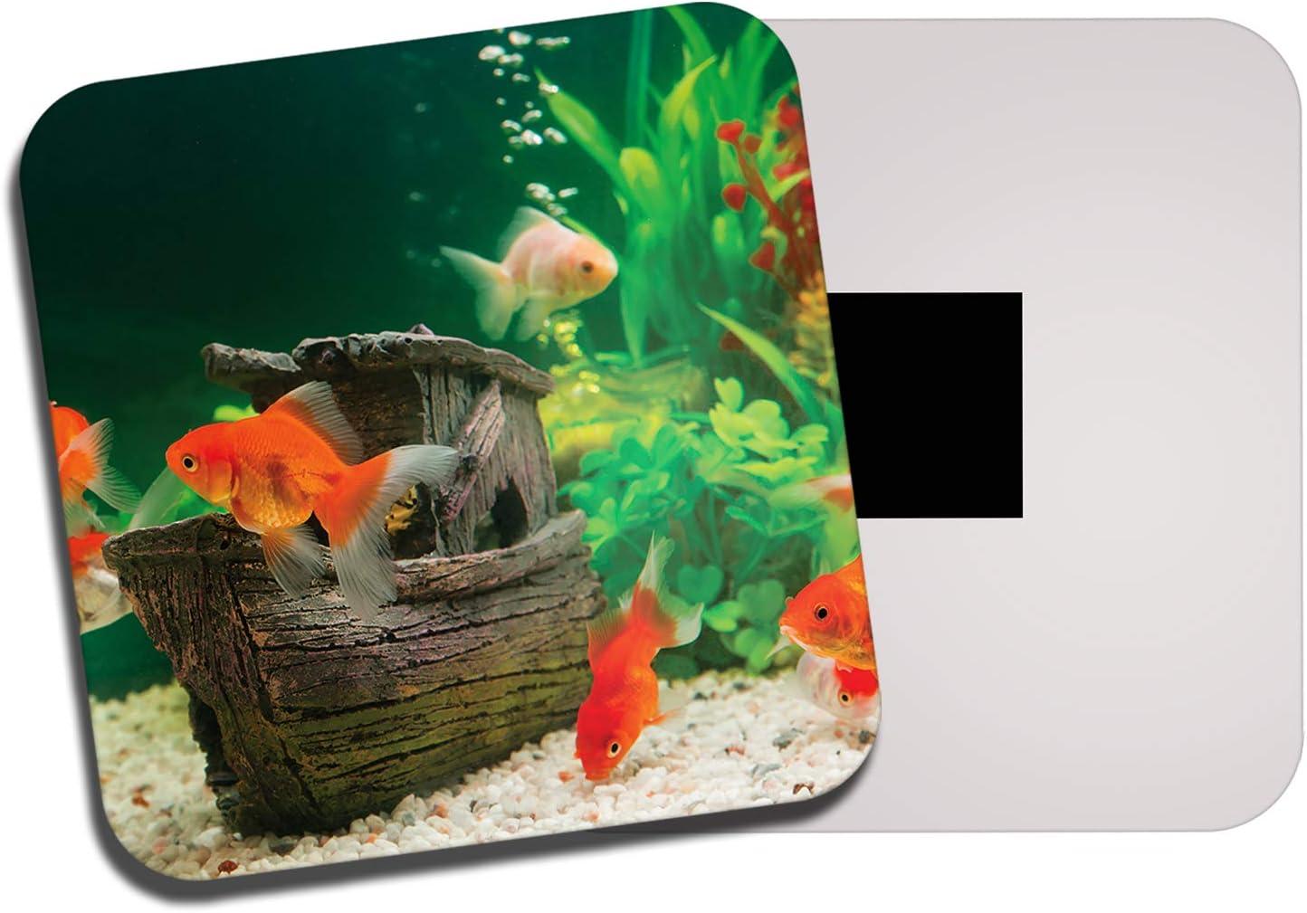 DestinationVinyl Pretty Goldfish Fridge Magnet - Fish Aquarium Pet Kids Funny 8427