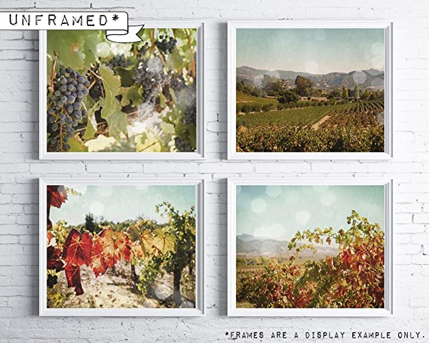 Amazon.com: Vineyard wall art - Wine Country decor - kitchen wine ...