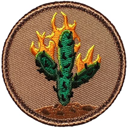 d7c5ad03a6b5 Amazon.com: Burning Cactus Patrol Patch - 2