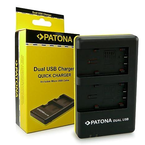 PATONA Dual Cargador VW-VBT190 VBT-380 para Panasonic HC V110 V120 V160 V210 V270 V510 V520 V710 V720 V727EB V750EB V770EB VX870 VX989 VXF999 W570 ...