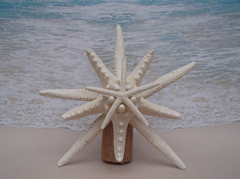 Starfish Tree Topper - 5-6