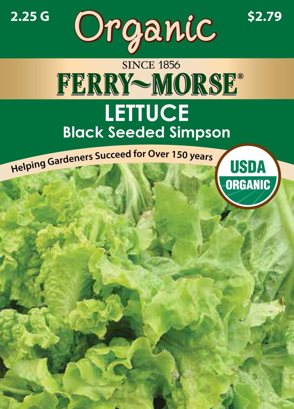 Ferry-Morse Organic Lettuce - Black Seeded Simpson Seeds