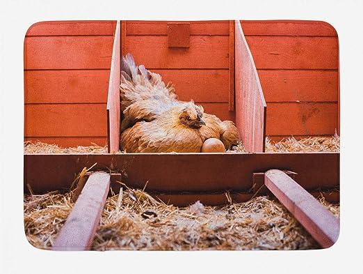 Estera de baño para animales de granja, foto de pose con gallina ...