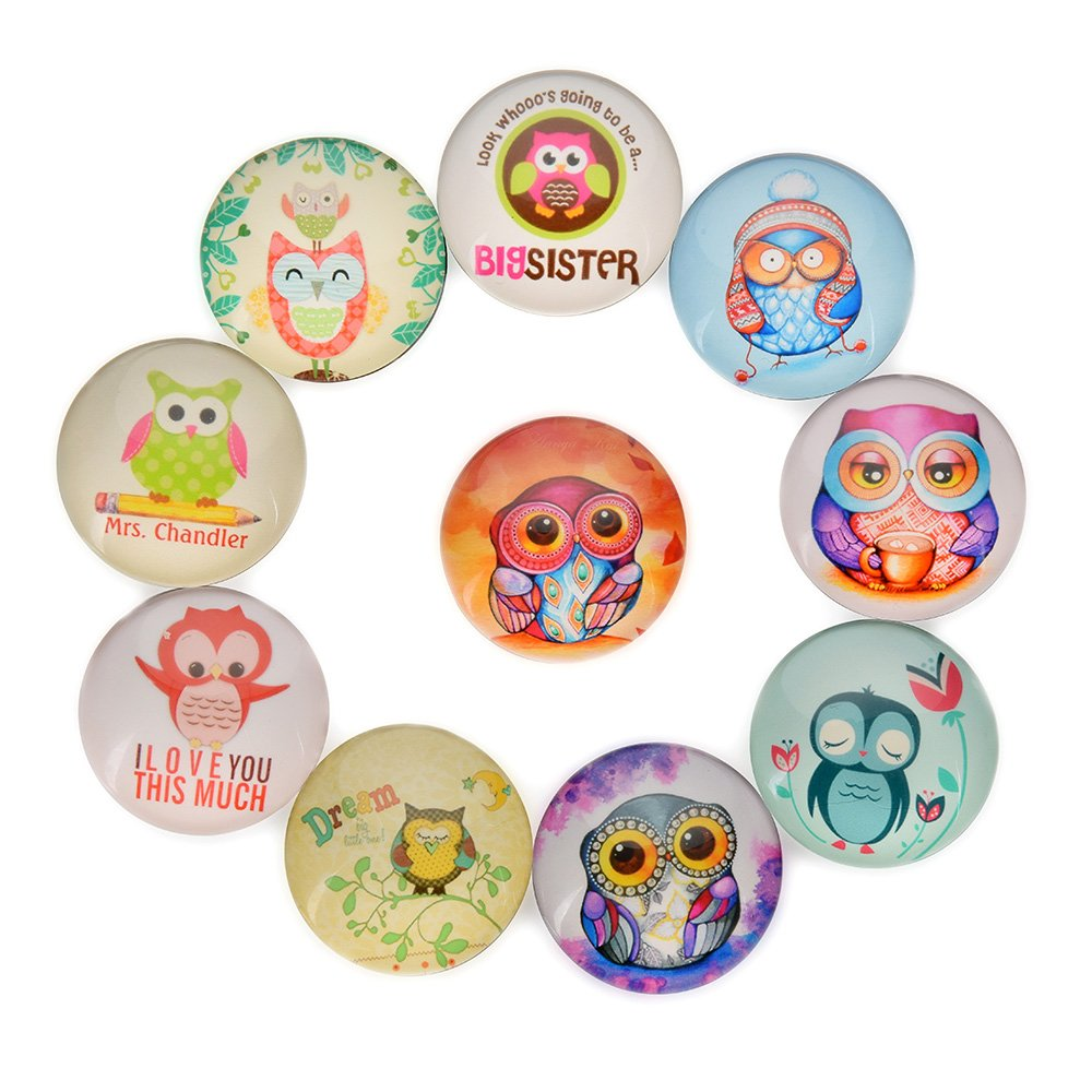 FF Elaine 10 Pcs Fridge Magnets Crystal Glass Housewarming Home Decorations Gift. (Owl)