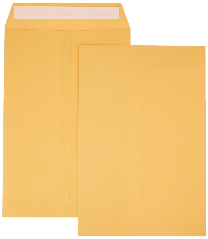 AmazonBasics Catalog Envelopes, Peel & Seal, 10 x 13 Inch, Brown Kraft, 250-Pack AMZA32