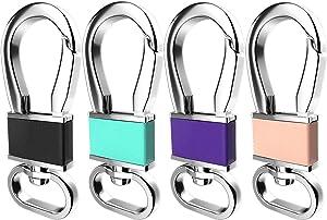 Teskyer 4 Pack Metal Carabiner Keychain Key Clip Hook, Key Rings Key Chain Ring Holder Organizer for Car Key Finder