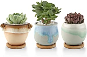T4U 3 Inch Ceramic Succulent Planter Pots with Bamboo Tray Set of 3, Plant Cactus Container Flowing Glaze Flower Pots Window Box Best for Home Office Table Desk Decoration Gift for Mom Sister