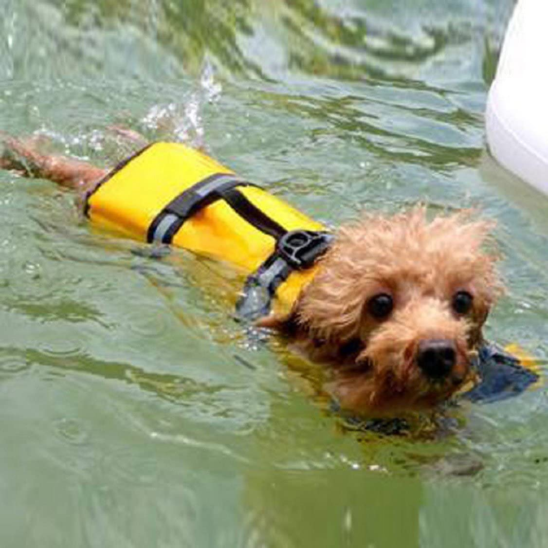 Egmy Pet Life Jacket Pet Products Outward Adjustable Doggy Life Vest with Rescue Handle