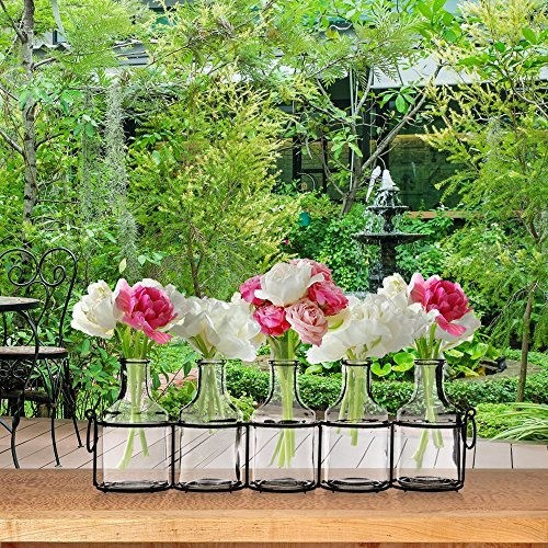58fc500d35e Small Bud Glass Vases in Black Metal Rack Stand