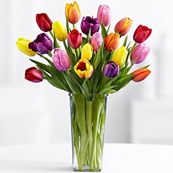 Amazon Fresh Cut Multi Colors Tulips 20 With A Free Vase