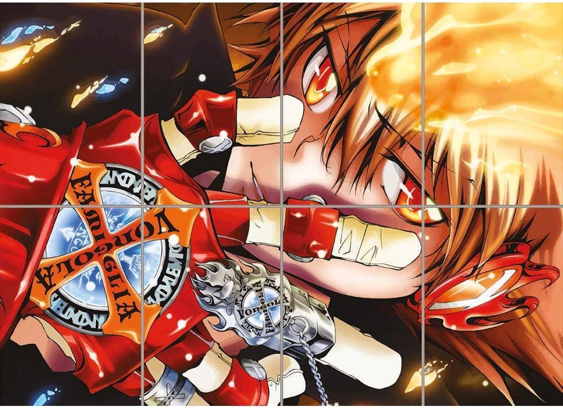 Amazon Com Doppelganger33 Ltd Katekyo Hitman Reborn Cartoon Anime Manga Wall Art Multi Panel Poster Print 47x33 Inches Home Kitchen