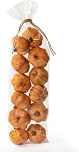 ANDALUCA Natural Vase Fillers | Fall, Autumn & Thanksgiving Home Decor (Mini Pumpkins)