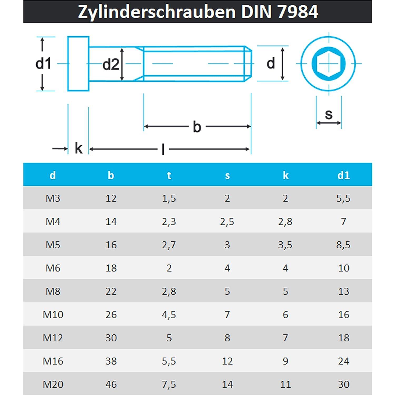 PROTECH M5x12 Zylinderschrauben 10 St/ück DIN 7984 niedrig/Inbus/rostfrei Edelstahl A2 V2A Zylinderkopfschrauben mit Innensechskant