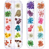 TEOYALL 24 Colors Dried Flowers for Nail Art, 2 Boxes 3D Dry Flowers Nail Stickers Colorful Natural Real Flower Nail Decals