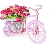 Tied Ribbons Cycle Shape Plastic Flower Vase with Peonies Bunches (10.01 cm x 11.99 cm x 21.01 cm)