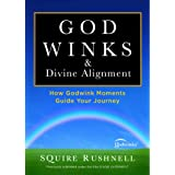 Godwinks & Divine Alignment: How Godwink Moments Guide Your Journey (4) (The Godwink Series)