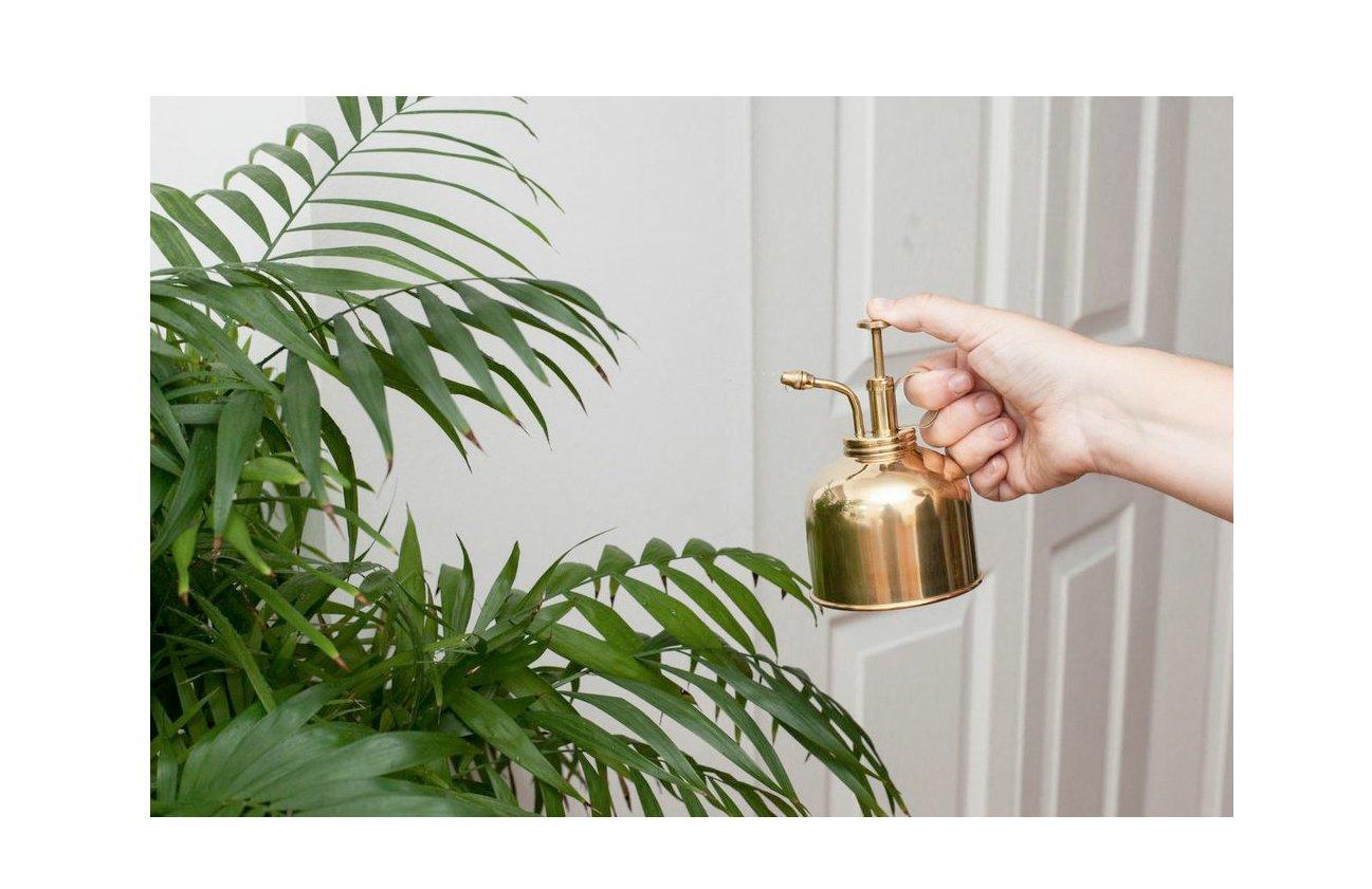 Kikkerland Plant Mister, Brass