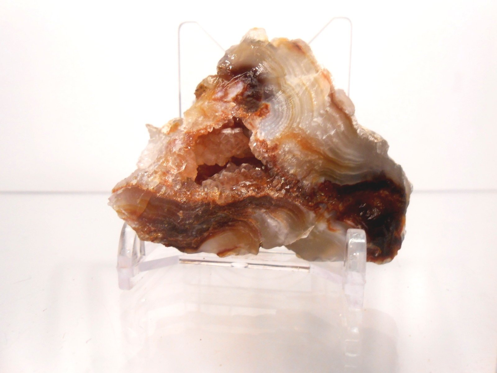 Rock Tumbler Gem Refill Kit Mixed ''Fire'' Agate Rough From The Mines of Calvillo,(Aguascalientes) Mexico, Deer Creek & Slaughter Mt. Arizona. 8 oz by Unknown (Image #5)