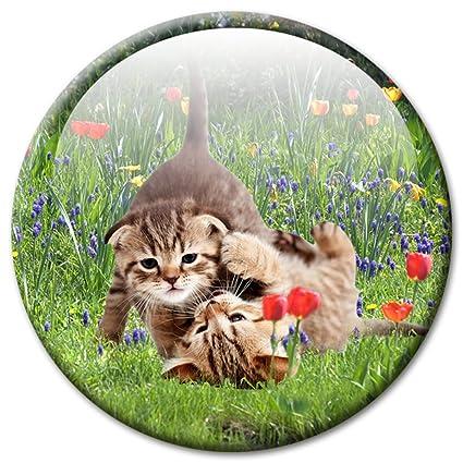 Imán Gato en el jardín Wiese 5 cm de diámetro Frigorífico magnético con diseño de gato